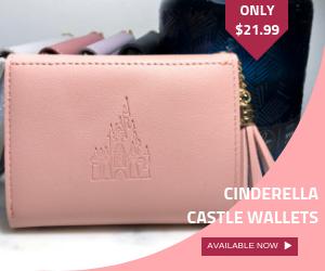 Cinderella Castle Wallet